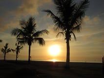 Strand av lilla viken av Bertioga Arkivfoto