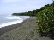 Strand av osaen för nationalparkcorcovadohalvö Arkivbild