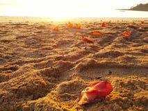 Strand av Payam Island i Ranong, Thailand Royaltyfria Foton