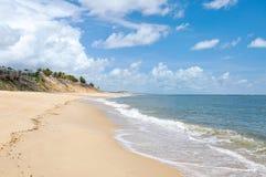 Strand av pipaen som är födelse- (Brasilien) Royaltyfria Bilder