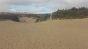 Strand av Playa Blanca i Fuerteventura, Canarias 4 arkivfoton