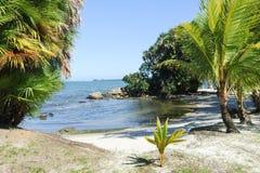 Strand av Playa Blanca nära Livingston Royaltyfri Foto