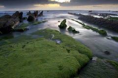 Strand av vizcaya arkivfoton