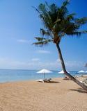 Strand in Bali stockfotos