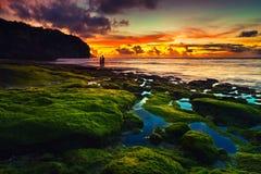 Strand Bali royaltyfri bild