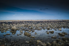 Strand Batu Hitam stockbilder