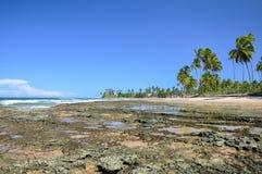 Strand bei Ebbe (Brasilien) Stockfotos