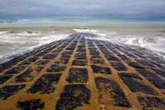 Strand in België stock fotografie