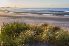 strand Belgien royaltyfria foton