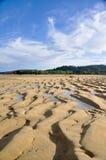 Strand bij Abel Tasman nationaal park Stock Afbeeldingen