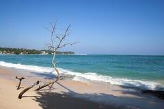 Strand bij zijn beste Royalty-vrije Stock Foto