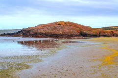 strand brittany Royaltyfri Foto