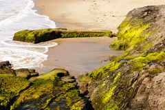 1000 strand, Californië Stock Afbeelding