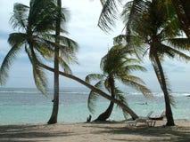 Strand in Caribean Stock Foto's