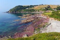 Strand Cornwall England UK för Talland fjärdsingel Royaltyfri Bild