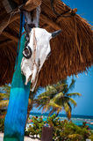 Strand in Costa Maya Stockfoto