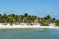 Strand in Costa Maya, Mexico Royalty-vrije Stock Foto's