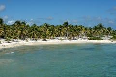 Strand in Costa Maya, Mexico Stock Foto's