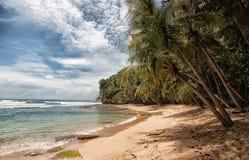 strand Costa Rica Fotografering för Bildbyråer