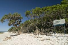 Strand Dame Musgrave Island Lizenzfreies Stockfoto