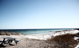 strand denmark Royaltyfria Foton