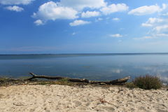 Strand der Bucht des Kobolds, Polen Lizenzfreie Stockfotos