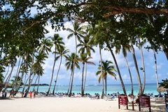 Strand der Dominikanischen Republik Lizenzfreies Stockbild