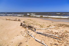 Strand der Ostsee in Sobieszewo Lizenzfreie Stockfotografie