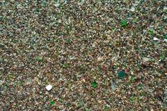 Strand des Glaskiesels Stockbilder