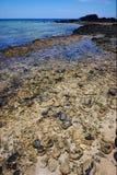 Strand des Steins Lizenzfreie Stockfotos