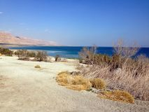 Strand des Toten Meers auf Sunny Day lizenzfreie stockfotografie