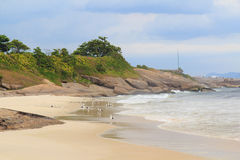 Strand Diablos (Teufel) mit Seemöwen, Rio de Janeiro Stockfotografie
