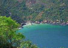 Strand dichtbij een tropisch bos Stock Afbeeldingen