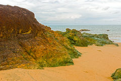 Strand dichtbij Pedasi in Panama Royalty-vrije Stock Afbeelding