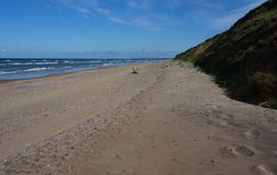 Strand, duinen en zand stock foto