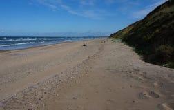 Strand, dyn och sand Arkivfoto