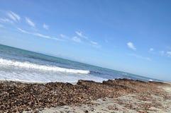 Strand efter storm Arkivfoton