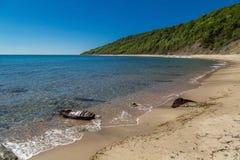 Strand en bos in de Bulgaarse kust van de Zwarte Zee Stock Afbeeldingen