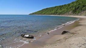 Strand en bos in de Bulgaarse kust van de Zwarte Zee stock videobeelden