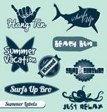 Strand en het Surfen Etiketten en Stickers vector illustratie