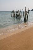 Strand en houten stokken Royalty-vrije Stock Foto