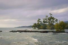 Strand en overzees stock afbeeldingen