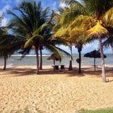 Strand en overzees op de kust van Bahia stock afbeeldingen