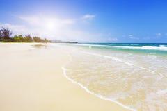 Strand en tropische overzees Royalty-vrije Stock Afbeelding