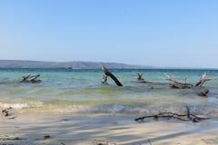 Strand för blått vatten av den Morrocoy nationalparken Arkivbilder