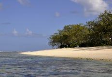 Strand för dam Elliot Island royaltyfri fotografi