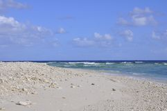 Strand för dam Elliot Island royaltyfria foton