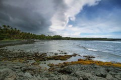 Strand för Punalu'u svartsand Arkivfoton