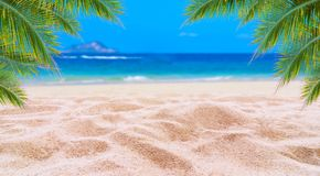 Strand för sand för sommarsemester vit med utrymme för golv för sikt för hav för bakre ram för textkokosnötsidor driftigt royaltyfri fotografi