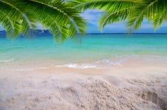 Strand för sand för sommarsemester vit med utrymme för golv för sikt för hav för bakre ram för textkokosnötsidor driftigt arkivfoton